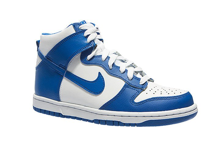 Nike Dunk High (GS) 308319-125 ...