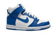 Nike Dunk High (GS) 308319-125