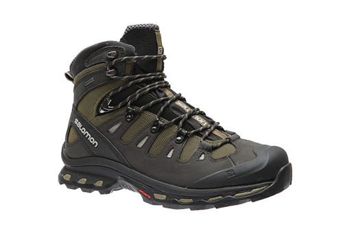 Salomon Quest 4D 2 GTX 373259